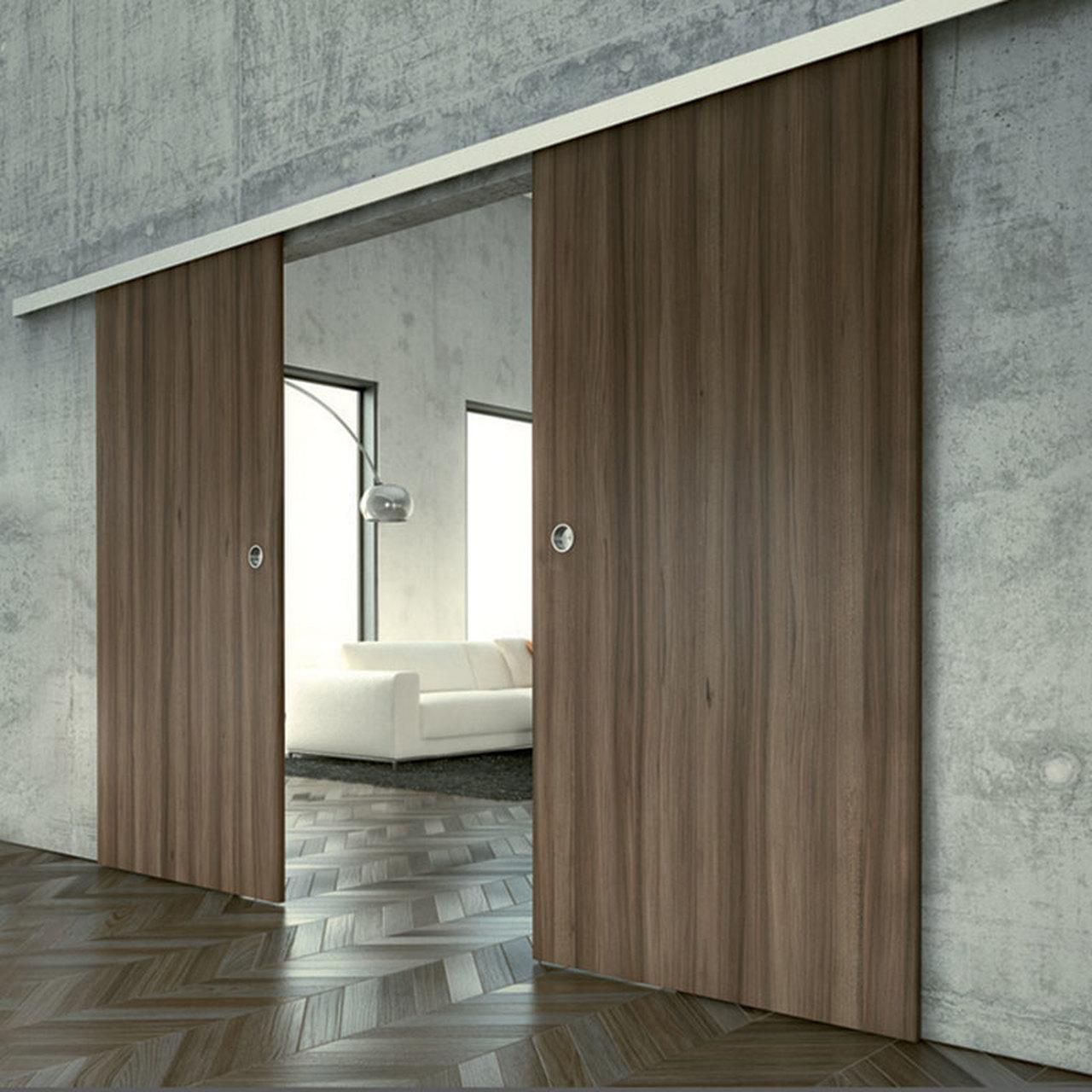 Commercial-Barn-Door